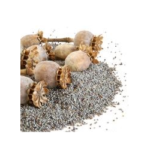 Pavot semences bio 100g